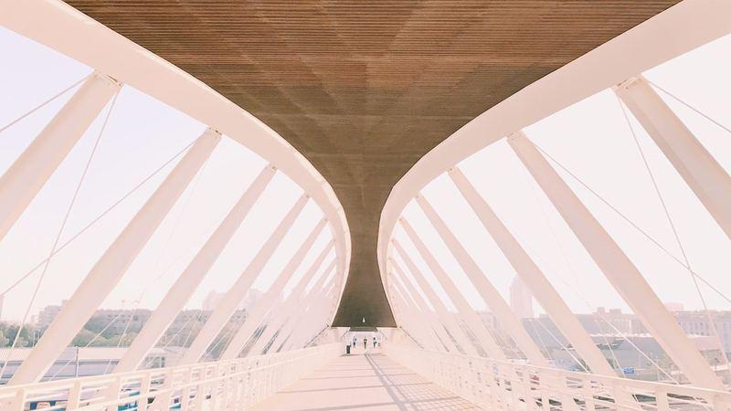 Il Crollo Del Ponte Di Genova Stimola Alcune Riflessioni Sul Ruolo
